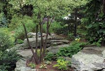 Landscaping / by Judy Wood