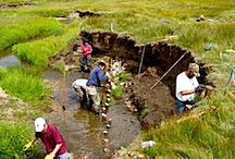 Permaculture - Africa / In search of a permanent culture for africa.