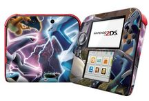 Skin sticker 2DS
