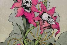 черепа скелеты