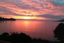 View from my window / I am blessed to live on a beautiful island in Puget Sound.  Here is what I see from my bedroom window.  It's never the same from hour to hour.