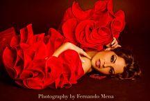 flamenco corrida / by Sylvie Guitard