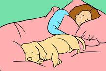 Dogs tips n yricks