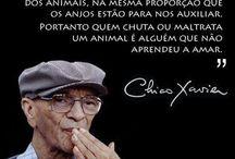Chico Xavier (Mandato de amor)
