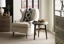 Shaw Carpet & Rugs / Various Shaw carpets and rugs