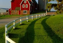 American Midwest Farm
