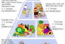 Vegetarian Information / by Jo T