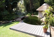 Garden Redesign Inspiration / by Rebecca Goldthorpe