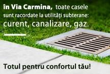Via Carmina. A place called home