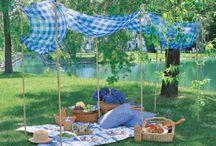 Family picnic's