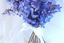 FLOWERS & DECORATION IDEAS