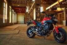 Favourite Factory Bikes/Colours