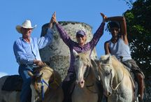 Around the World with Hoses / Horses and riding around the world