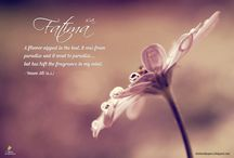 Fatima Zahra (s.a.) / Wallpapers related to Lady Fatima Zahra (sa), the daughter of Holy Prophet (sawa).
