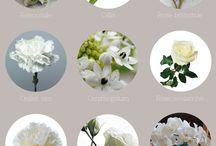fleurs pour deco de table