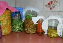 probiotics / fermented foods / by Lucie Tsoref