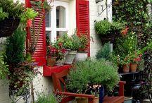 Garden and Trowel / Great general gardening tips  / by Debbie Howard