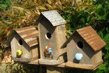 casinha passarinho
