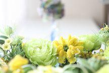 黄色い花 / 黄色い花を集めました。