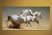 Horse famous