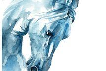 ilustraciones de caballos