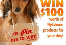 Nylabone Pinterest Sweepstakes / by Nylabone Products