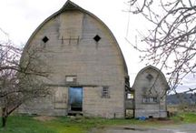 Architecture - Barns / Snohomish County is 3/4 farmland. With all that farmland, we have some amazing historic barns.