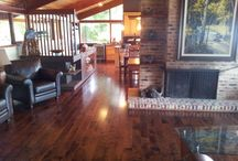Hardwood Flooring Projects / Our current hardwood flooring projects.
