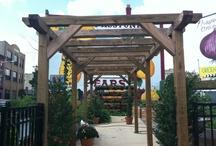 Gardens + Greens on East Passyunk