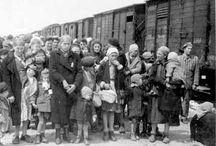 Holocaust _ paul