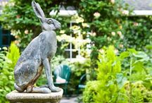 Hares and bunnies