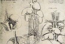 Artwork / Peachtree Vascular Specialists | 770-996-9945 | www.pvsatl.com