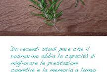 Alimenti, erbe aromatiche e salute