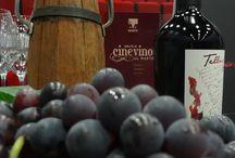 CINEVINO / Rassegna di cinema e degustazioni enogastronomiche. Le migliori etichette d'Italia, i vini più buoni, i film più suggestivi, incorniciati da un menù dall'intenso sapore.