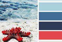 » Color Scheme