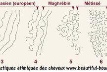 Typologie(s) et anatomie du cheveu / Morphologie, composition biologique et physiologique du cheveu en général et bouclé en particulier. Explications scientifiques.