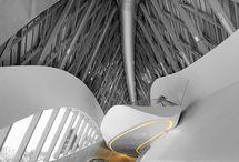 #zaha Hadid