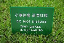 Funny mistranslations