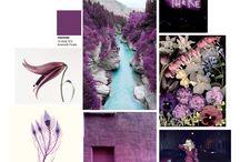 Mood Board - Purple