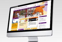 NISB Portal Impressie / http://www.pinterest.com/marcovdkuilen/