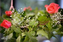 buitenleven / Bloemen en meer in onze tuin..