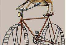 Kot rower
