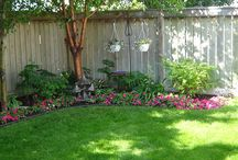 small back yard