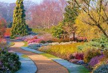 Winter Gardens
