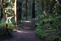 Hikes / Good hikes for family to do or repeat. Washington, Oregon, Nevada