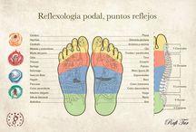 Mapas Reflexologia holistica