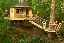Treehouse / Treehouse possibilities