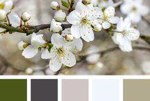 # Idées Color Palette # / Idées d'harmonie de couleurs pour ici et là