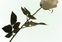Kunstige roser / Fås i flere farver