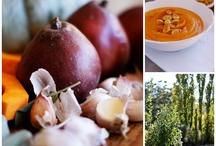 Food Glorious Food - Soups
